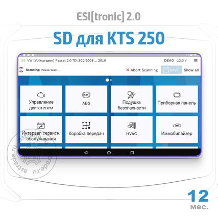 Bosch ESI[tronic] для KTS 250: подписка на 12 мес