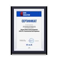 Сертификат по обучению Sivik Ларин П. А.