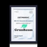Сертификат дилера GrunBaum BrainStorm 2020